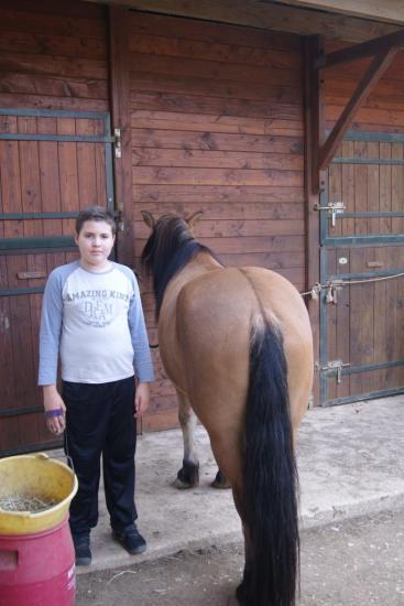 samuel-cheval-2.jpg